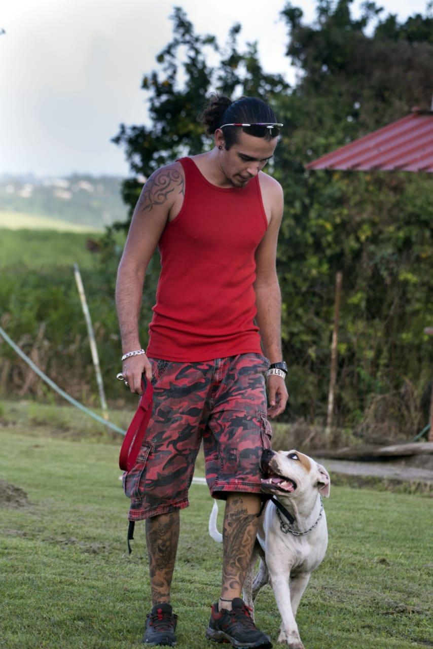 Club d'Éducation Canine Saléen en Martinique - Sport canin Ring Agility Obéissance - Galerie 3