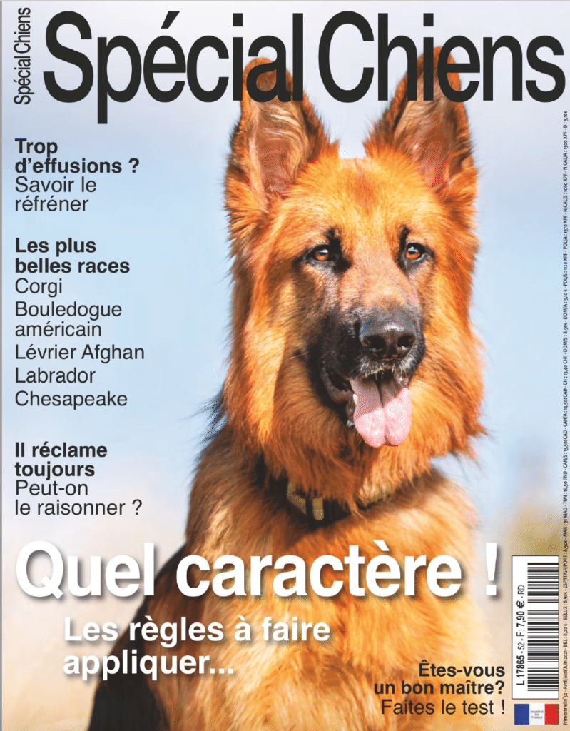 Article Spécial Chiens by France Press 77 - CECS Martinique Club d'Education Canine en Martinique